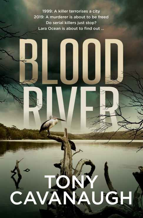 Blood River Cover.jpg