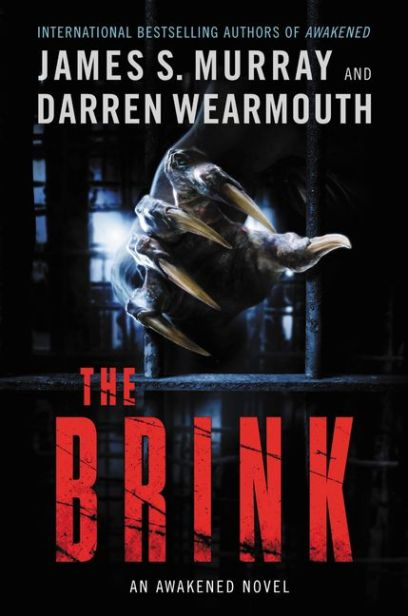 The Brink Cover.jpg