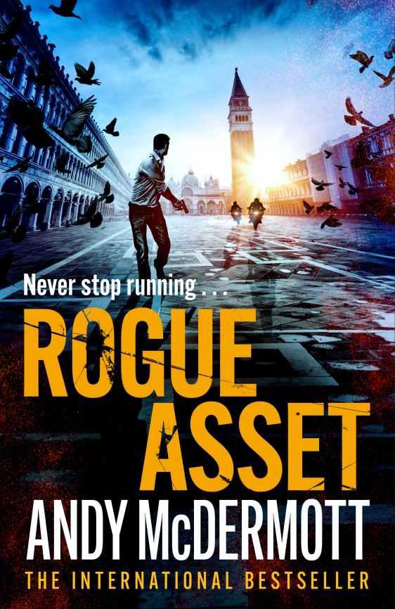 Rogue Asset Cover